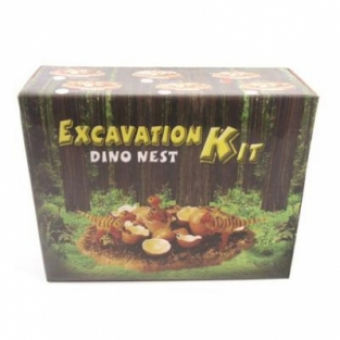 Dinosaurus nest opgraving set
